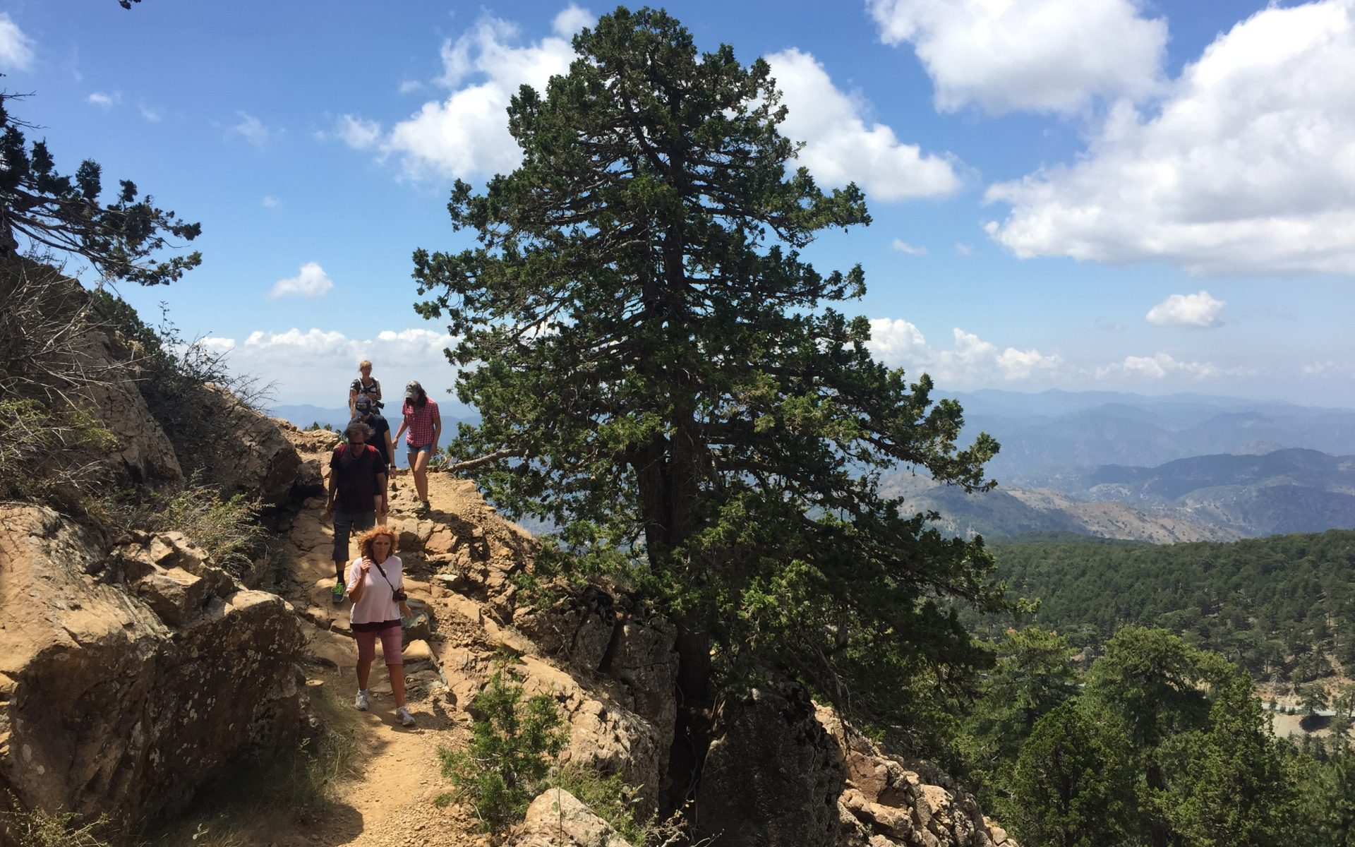 Wandern, Wanderung, Höhenweg, Berg, Berge, Olymp, Olympos, Artemis, Ophiolith, Plutonisches Gestein, Zypern